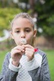 Cute little girl blowing dandelion Royalty Free Stock Image