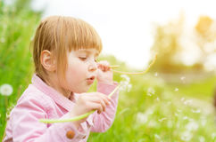 Cute little girl blowing off dandelions Royalty Free Stock Photos