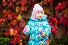 Cute little girl in the blue jacket on the background of red vin Stock Images