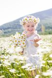 Cute little girl with bouquet of chamomiles Royalty Free Stock Image