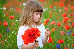 Cute little Girl with a bouquet of red poppies Stock Photos
