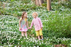 Children in spring park with flowers. Cute little girl and boy playing in blooming spring park with first white wild anemone flowers. Children on Easter egg hunt Stock Images