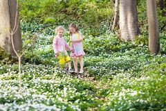 Children in spring park with flowers. Cute little girl and boy playing in blooming spring park with first white wild anemone flowers. Children on Easter egg hunt Stock Photo