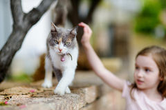 Cute little girl and a cat outdoors. On hot summer day in Italy Stock Images