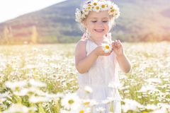 Cute little girl in the chamomile field Royalty Free Stock Photography