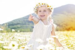 Cute little girl in the chamomile field Stock Image