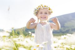 Cute little girl in the chamomile field Royalty Free Stock Images