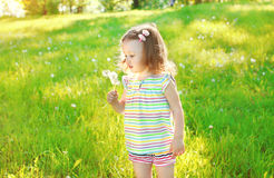 Cute little girl child blowing dandelion flower Royalty Free Stock Photography