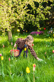 Cute little girl collecting easter eggs Royalty Free Stock Photography