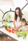 Cute little girl cooking with her mother, healthy food Stock Image