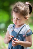 Cute little girl with a Dandelion Royalty Free Stock Photos