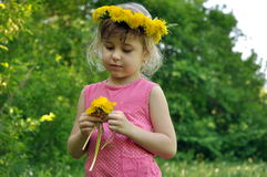 Cute little girl with dandelions Royalty Free Stock Photo