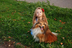 Little girl with a dog Sheltie royalty free stock photo