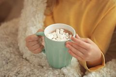 Cute little girl drinking hot chocolate with marshmallow, Stock Image