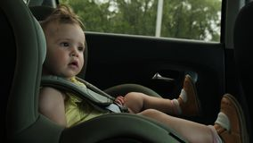 Cute little girl drives with family in car child safety seat stock images