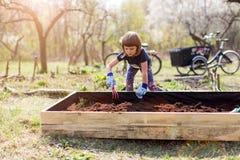 Cute little girl enjoy gardening. In urban community garden stock photo