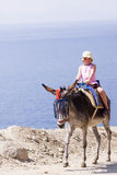 Cute little girl is enjoying her donkey ride by the ocean. Cute little girl is enjoying her donkey ride somewhere in Greece Stock Photo