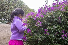 Cute little girl enjoying the smell of lilac flowers stock image