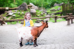 Cute little girl feeding a goat. Cute little toddler girl with curly hear wearing a colorful dress feeding a goat playing and having fun watching animals on a royalty free stock photography