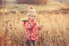 Cute little girl in a field at sunset Royalty Free Stock Image