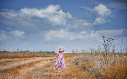Cute little girl in the field Royalty Free Stock Photography