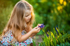 Cute little girl with flower. Cute little girl playing with flower Stock Photos