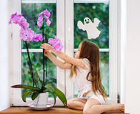 Cute little girl with flower sitting on windowsill of new pvc wi Stock Photography