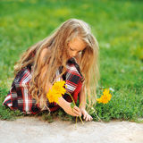 Cute little girl with flowers in a summer perk Stock Photography