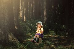 Cute little girl in the forest alone. Fairy tale beautiful light Stock Photos