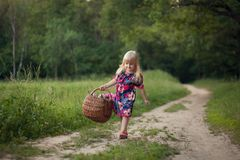 Cute little girl on a forest road with a basket of flowers. royalty free stock images