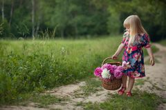 Cute little girl on a forest road with a basket of flowers. The concept of carefree childhood royalty free stock image