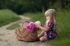 Cute little girl on a forest road with a basket of flowers. The concept of carefree childhood stock images