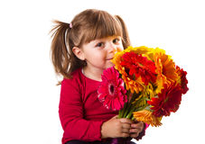 Cute little girl with gerbera flowers bouquet Stock Photography