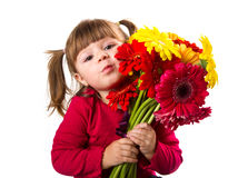 Cute little girl with gerbera flowers bouquet Royalty Free Stock Images