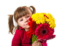 Cute little girl with gerbera flowers bouquet Royalty Free Stock Photography