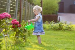 Cute little girl giving water garden flowers Stock Image