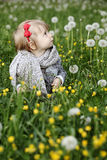Cute little girl in grass Stock Photography