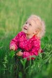 Cute little girl in green grass Stock Photos