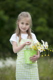 Cute little girl harvesting flowers. In a bucket Stock Images