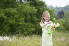 Cute little girl harvesting flowers. In a bucket Royalty Free Stock Photo