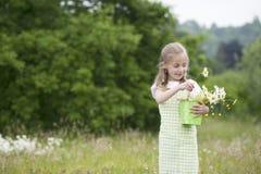 Cute little girl harvesting flowers Royalty Free Stock Photo