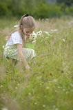 Cute little girl harvesting flowers. In a bucket Royalty Free Stock Images