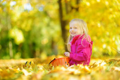 Cute little girl having fun on beautiful autumn day. Happy child playing in autumn park. Kid gathering yellow fall foliage. stock image