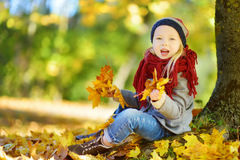 Cute little girl having fun on beautiful autumn day. Happy child playing in autumn park. Kid gathering yellow fall foliage. Autumn activities for children Royalty Free Stock Image