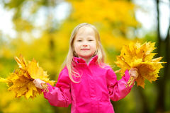 Cute little girl having fun on beautiful autumn day. Happy child playing in autumn park. Kid gathering yellow fall foliage. stock photo