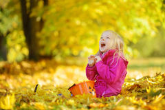 Cute little girl having fun on beautiful autumn day. Happy child playing in autumn park. Kid gathering yellow fall foliage. royalty free stock photography