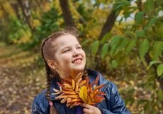 Little girl having fun on beautiful autumn Royalty Free Stock Image
