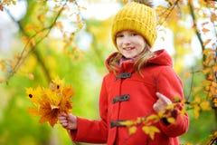 Cute little girl having fun on beautiful autumn day Stock Photos