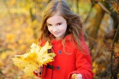 Cute little girl having fun on beautiful autumn day Stock Photography