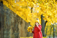 Cute little girl having fun on beautiful autumn day Royalty Free Stock Photo